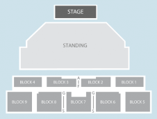 Standing Seating Plan at Brixton Academy
