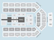 Wrestling Seating Plan at Metro Radio Arena