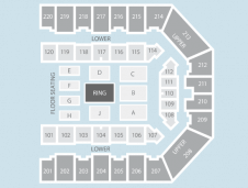 Wrestling Seating Plan at FlyDSA Arena (Sheffield Arena)